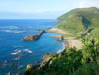 奄美大島の崎原漁港/海岸「戸口から小湊へ抜ける道の途中」