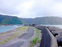 奄美大島の小湊集落/小湊漁港/小湊海岸 - 港とビーチと公園が複合している感じ