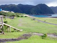 奄美大島の小湊集落/小湊漁港/小湊海岸 - 何故か看護学校の大きな建物が!?