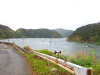 奄美大島の倉木崎海底遺跡 - 養殖場は埋め立てられていたような・・・