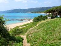 奄美大島のビラビーチ/ハート岩への入口 - 草むらを降りればビーチへ行けます