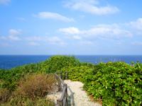 奄美大島のあやまる岬観光公園展望台の写真
