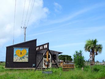 奄美大島のあやまる牧場「あやまる岬近くにある私設牧場」