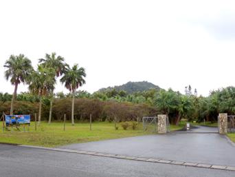 明神崎リゾート/あまみティダパーク/グラウンドゴルフ