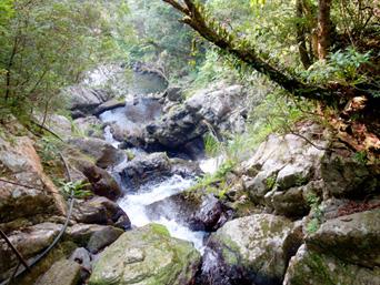 奄美大島のアランガチの滝上/滝上へのルート「アランガチの滝の上からの景色」