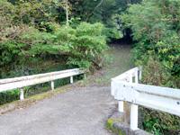 奄美大島のアランガチの滝上/滝上へのルート - アランガチの滝の前の脇道から上へ