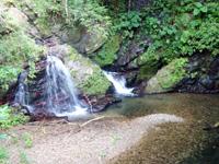 奄美大島のアランガチの滝上/滝上へのルート - 滝上に小さな滝もあります