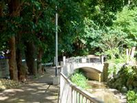 奄美大島のおがみ山公園/展望広場/行幸広場 - 市役所裏手にある入口