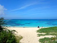 奄美諸島 奄美大島の土盛海岸/ビーチの写真