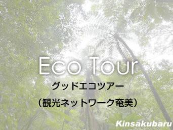奄美大島の観光ネットワーク奄美/グッドエコツアー「NPO法人日本エコツーリズム協会が主催」