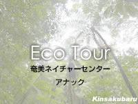 奄美大島の奄美ネイチャーセンター アナック