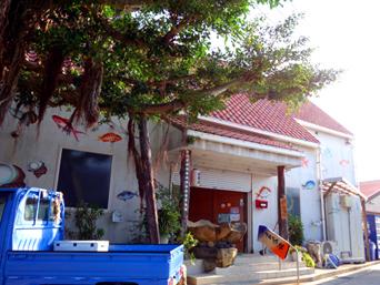 居酒屋・島料理 ガジュマルの樹の下で
