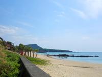 用安海岸(奄美諸島/奄美大島のビーチ/砂浜)