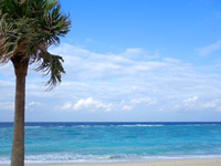 大浜海浜公園/大浜ビーチ