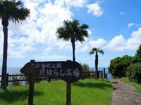 奄美大島の大浜海浜公園/大浜ビーチ - 景色なら下より上の方がおすすめ