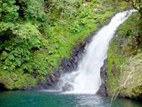 奄美諸島 奄美大島のマテリヤの滝の写真