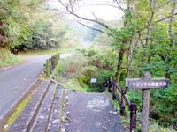 奄美大島のマテリヤの滝 - フォレストポリスへ行く途中にある