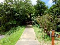奄美大島の湯湾岳展望台 - 湯湾岳もすぐ近くに望める