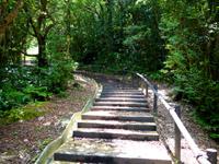 奄美大島の湯湾岳展望台 - 大島海峡側は壮大な景色が望める