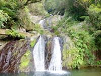 奄美大島のアランガチの滝 - 滝上に鉄橋が望める?