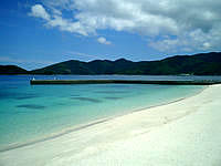 奄美大島のタエン浜海水浴場 - 広さも申し分ないです