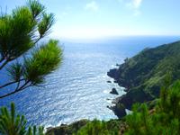奄美大島の曽津高崎展望所 - 灯台は遠いが道のりはさらに遠い・・・