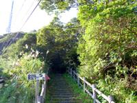 奄美大島の高知山展望台 - 駐車場からは階段を結構上がります
