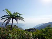 奄美大島の油井岳展望台 - 駐車場側の展望台からの景色