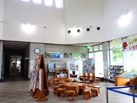 奄美大島の黒潮の森/マングローブパーク - 展望台へも有料の昇降機