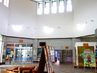 奄美大島の黒潮の森/マングローブパーク - ここで見るより、国道沿いの展望台がお勧め