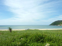 奄美大島の朝仁海岸の写真