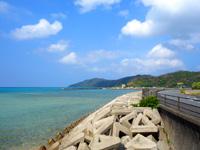 奄美大島の赤木名海岸 - 幹線道路からもビーチは一望できます