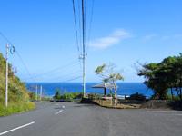 奄美大島の用展望台/休憩所 - 用海岸へと下っていく道の途中