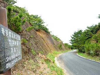 奄美大島の望楼台「案内板はあるがどこかわからない」