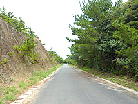 奄美大島の望楼台の写真