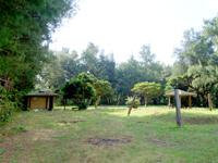 奄美大島の大瀬海岸/宇宿農村公園/サイクリングロード - 遊歩道序盤にある存在感が薄い公園