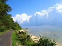 奄美大島の大瀬海岸/宇宿農村公園/サイクリングロード - 遊歩道の空港近くはシーサイドロード!