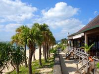 奄美大島のばしゃ山村/島おこし市場/レストランAMAネシア - シーサイドレストランもあります