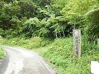 奄美大島の金作原原生林への道 - 序盤は舗装路です