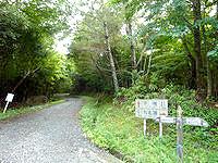 奄美大島の金作原原生林への道 - 名瀬市街方面との合流からは非舗装路