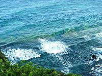 奄美大島の磯平パークの写真