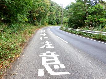 奄美大島の国道58号線/網野子峠/クロウサギに注意