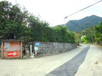 奄美大島の林道 嘉徳青久線 - 途中には川や滝がいろいろあります