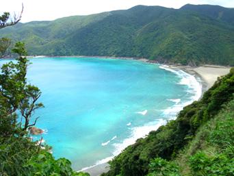 奄美大島の嘉徳海岸