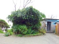 奄美大島の嘉徳海岸 - 海岸への出入り口
