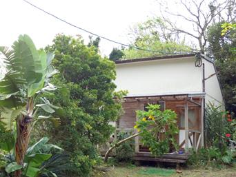 奄美大島の島カフェ&ギャラリー 嘉徳黒ウサギ工房(閉店)