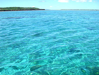 新城島の下地島と上地島の間の海