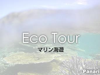 新城島のマリン海遊(廃業)「西表島大原からならパナリもそんなに遠くないかも」