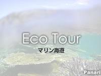 【西表島発パナリツアー】マリン海遊(廃業)の口コミ
