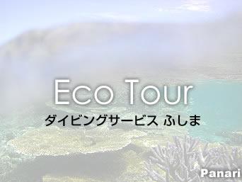 新城島のダイビングサービス ふしま「ダイビングショップが開催するパナリツアー」